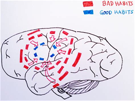 5 Steps to Breaking Bad Habits Psychology Today